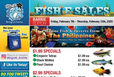 Big Al's (Barrie) Weekly Specials February 7 to 13