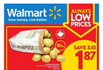 Walmart (ON) Flyer February 25 to March 3