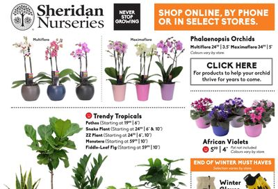 Sheridan Nurseries Flyer February 25 to March 17