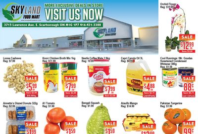 Skyland Food Mart Flyer February 26 to March 4