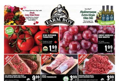 Farm Boy Flyer February 13 to 19
