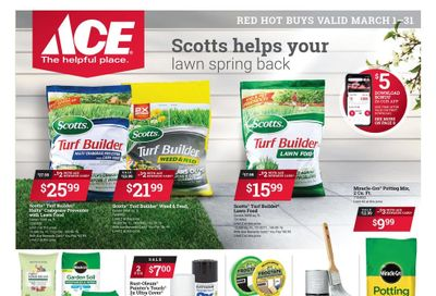 ACE Hardware Weekly Ad Flyer March 1 to March 31