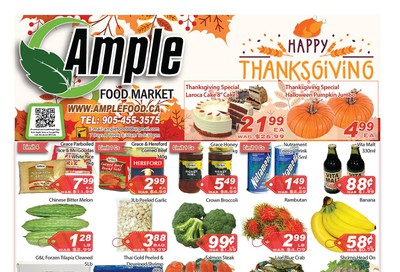 Ample Food Market Flyer October 11 to 17