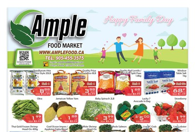 Ample Food Market Flyer February 14 to 20