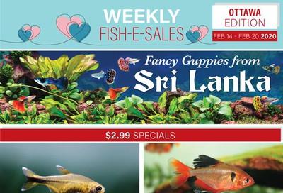 Big Al's (Ottawa East) Weekly Specials February 14 to 20