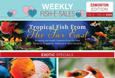 Big Al's (Edmonton) Weekly Specials February 14 to 20