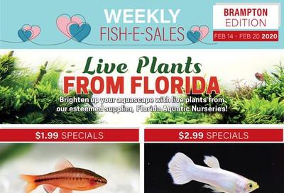 Big Al's (Brampton) Weekly Specials February 14 to 20