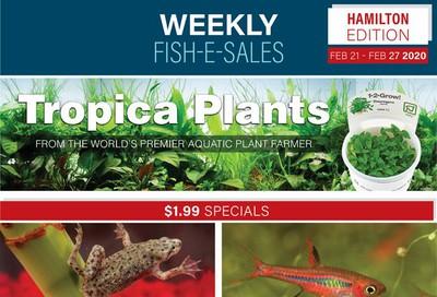 Big Al's (Hamilton) Weekly Specials February 21 to 27