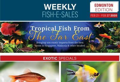 Big Al's (Edmonton) Weekly Specials February 21 to 27