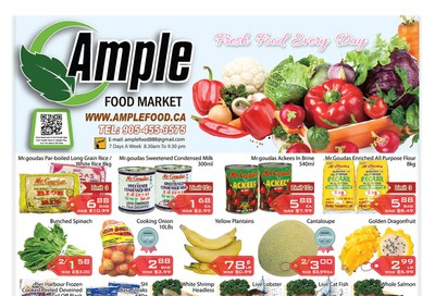 Ample Food Market Flyer February 28 to March 5