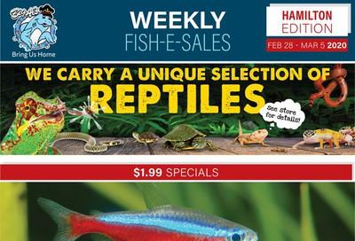 Big Al's (Hamilton) Weekly Specials February 28 to March 5
