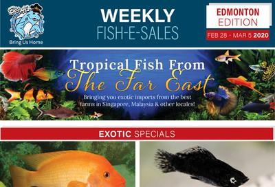 Big Al's (Edmonton) Weekly Specials February 28 to March 5