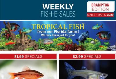 Big Al's (Brampton) Weekly Specials March 6 to 12