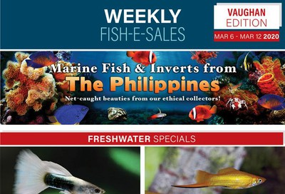Big Al's (Vaughan) Weekly Specials March 6 to 12