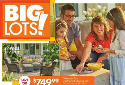 Big Lots Weekly Ad Flyer April 17 to April 24
