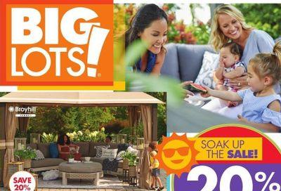 Big Lots Weekly Ad Flyer April 24 to May 1