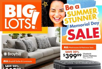 Big Lots Weekly Ad Flyer May 22 to June 5