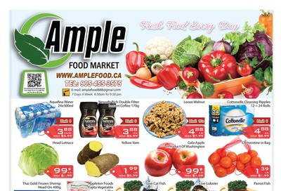 Ample Food Market Flyer March 13 to 19