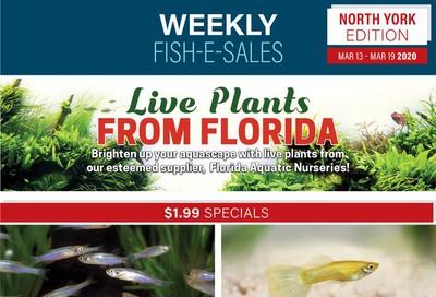 Big Al's (North York) Weekly Specials March 13 to 19