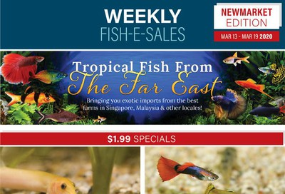 Big Al's (Newmarket) Weekly Specials March 13 to 19