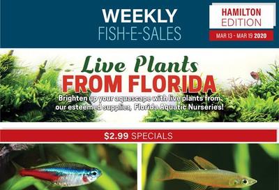 Big Al's (Hamilton) Weekly Specials March 13 to 19