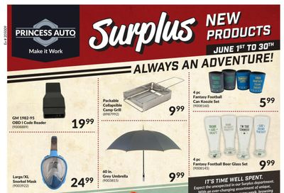Princess Auto Surplus New Products Flyer June 1 to 30