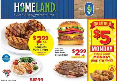 Homeland (OK, TX) Weekly Ad Flyer June 2 to June 8