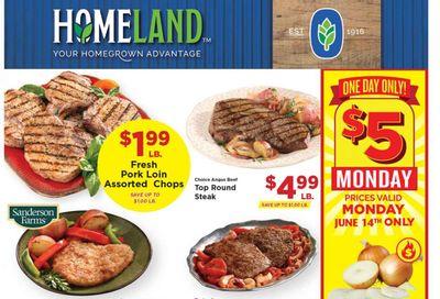 Homeland (OK, TX) Weekly Ad Flyer June 9 to June 15