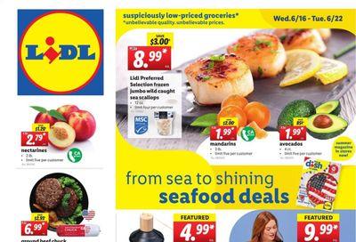 Lidl (GA, MD, NC, NJ, PA, SC, VA) Weekly Ad Flyer June 16 to June 22