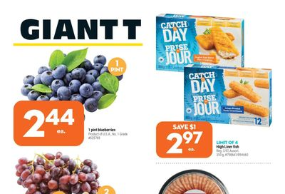 Giant Tiger (ON) Flyer June 16 to 22