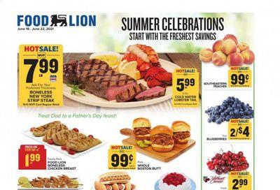 Food Lion (VA) Weekly Ad Flyer June 16 to June 22