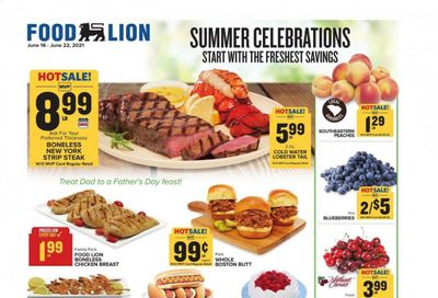 Food Lion (SC) Weekly Ad Flyer June 16 to June 22