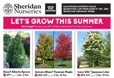 Sheridan Nurseries Flyer June 17 to 30