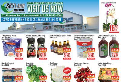 Skyland Food Mart Flyer June 18 to 24