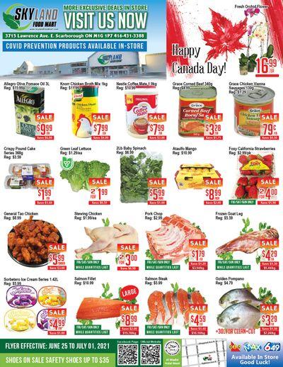 Skyland Food Mart Flyer June 25 to July 1