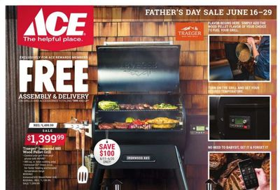 ACE Hardware Weekly Ad Flyer June 16 to June 29