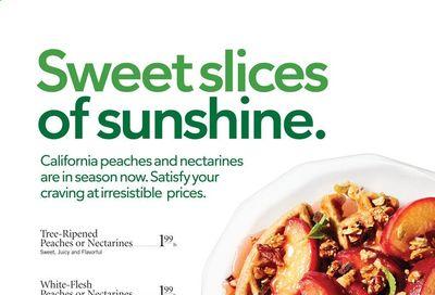 Publix (AL, FL, GA, NC, SC, TN) Weekly Ad Flyer July 8 to July 14