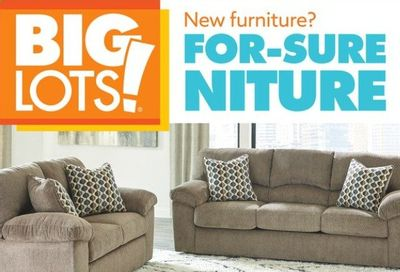 Big Lots Weekly Ad Flyer July 10 to July 17