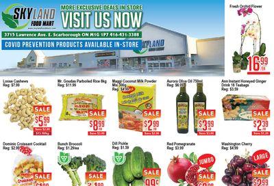 Skyland Food Mart Flyer July 16 to 22