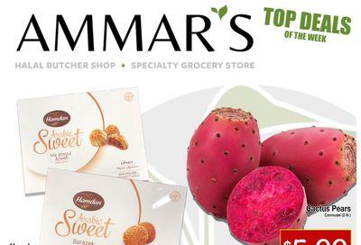 Ammar's Halal Meats Flyer July 22 to 28