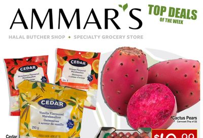 Ammar's Halal Meats Flyer August 19 to 25