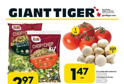 Giant Tiger (ON) Flyer October 13 to 19