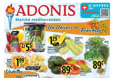 Marche Adonis (QC) Flyer October 21 to 27