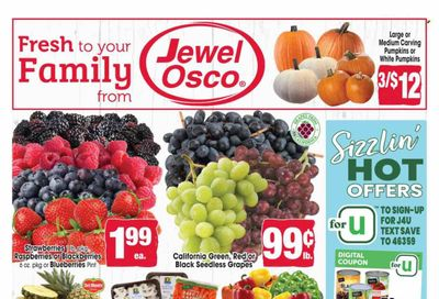 Jewel Osco (IL) Weekly Ad Flyer October 20 to October 27