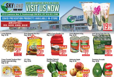 Skyland Food Mart Flyer October 22 to 28