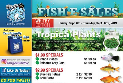 Big Al's (Whitby) Weekly Specials September 6 to 12
