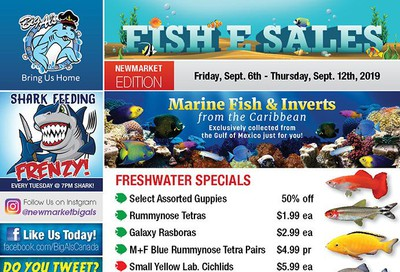Big Al's (Newmarket) Weekly Specials September 6 to 12