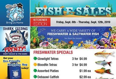 Big Al's (Kitchener) Weekly Specials September 6 to 12