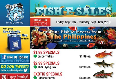 Big Al's (Brampton) Weekly Specials September 6 to 12