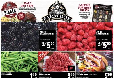Farm Boy Flyer June 11 to 17